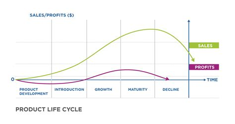Reading Stages Of The Product Life Cycle  Ivy Tech