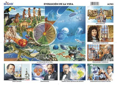 evolucion de la vida evoluci 243 n de la vida origen y teor 237 as