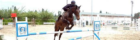 ucpa siege bayard equitation