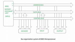Bus Organization Of 8085 Microprocessor