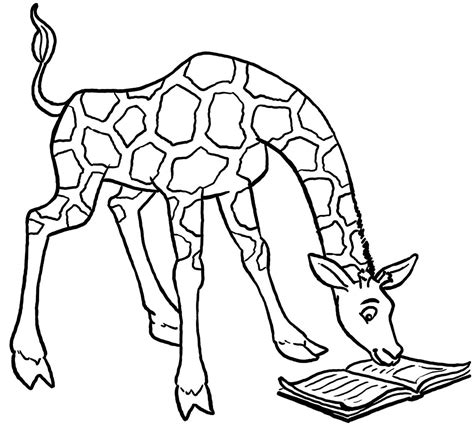 giraffe coloring pages    giraffe
