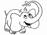 Elephant Coloring Pages Printable sketch template