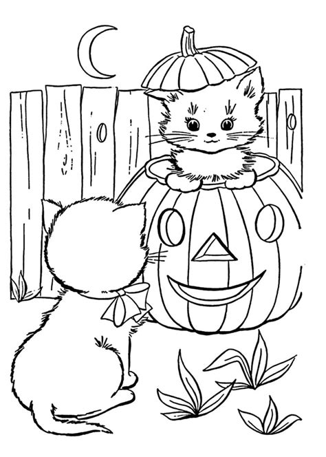 disegni da colorare di gattini piccoli disegni di gatti da colorare e stare gratis gattini