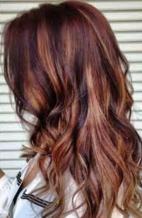 Gorgeous Brown Hair with Red Highlights