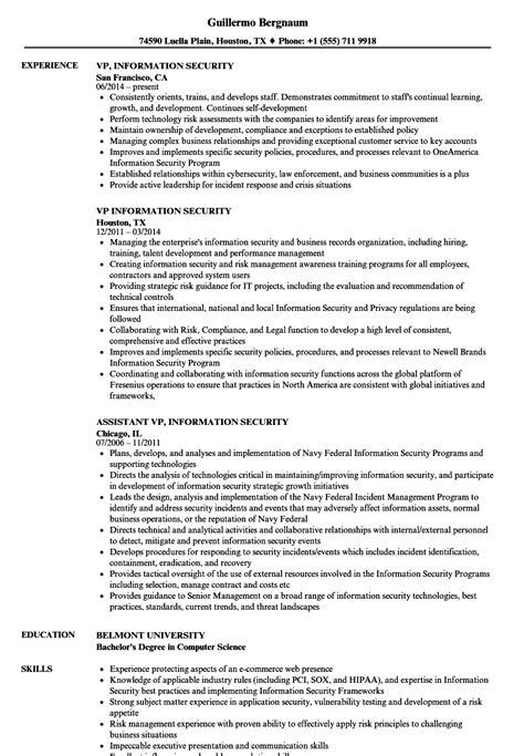 Information Security Resume by Vp Information Security Resume Sles Velvet