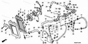Honda Motorcycle 2008 Oem Parts Diagram For Radiator