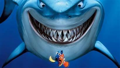 Nemo Finding Shark Movies Tv Desktop Wallpapers
