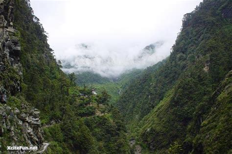 himalayan beauty information  pictures xcitefunnet