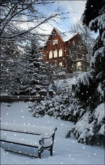 Soft Elegance зимние картинки источник