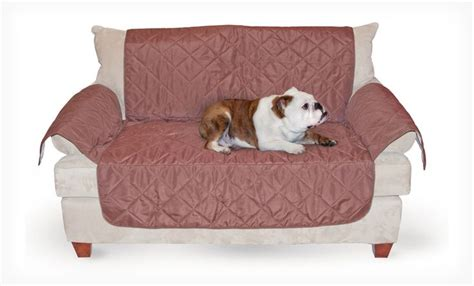 pet friendly slipcovers for sofas pet friendly furniture covers