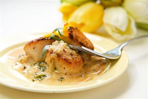 estragon cuisine recette sauce à l 39 estragon et au vin blanc