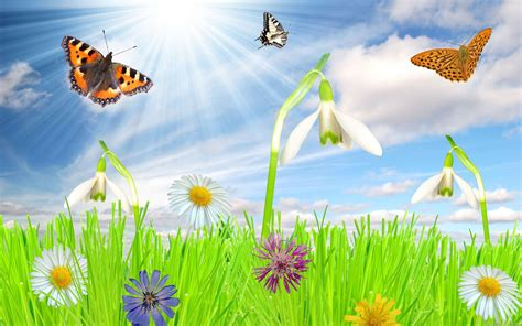 Animated Nature Wallpaper For Windows 7 - 3d desktop wallpapers for windows 7 84