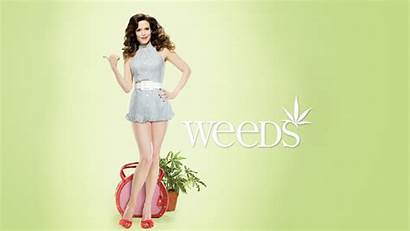 Tv Weeds Louise Parker Mary Series Wallpapers