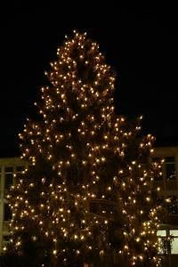 Lichterkette An Weihnachtsbaum Anbringen : lichterkette pixabay 232192 ~ Bigdaddyawards.com Haus und Dekorationen