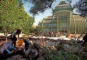 Japanischer Garten Schönbrunn by Botanischer Garten In Sch 246 Nbrunn K 246 Nnte Bald Eintritt