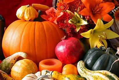 Harvest Fall Desktop Background Wallpapers Pumpkin Iphone