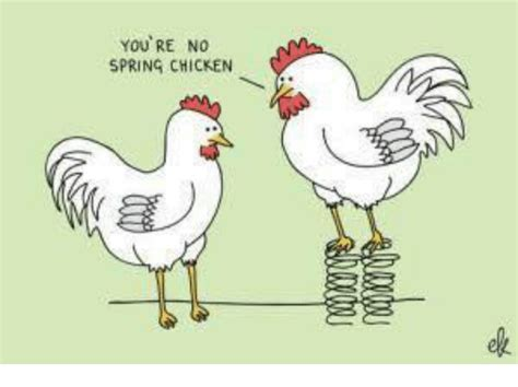 YOU'RE NO SPRING CHICKEN   Meme on ME.ME