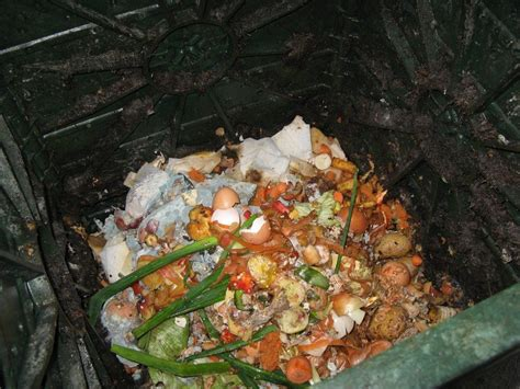 compost cuisine composting kitchen scraps tips for composting kitchen waste