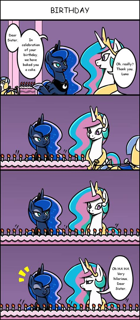 Mlp Funny Meme - 1239 best images about mlp on pinterest doctor whooves rainbow dash and ponies