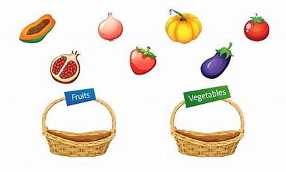 Drop Drag Vegetables Fruits Types Slide Open
