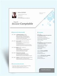 Curriculum vitae europass romana model completat ug99 cv curriculum vitae model romana yelopaper Choice Image