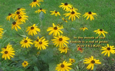 We asked members of the buzzfeed community to share their favorite bible verses with us. Christmas Cards 2012: Bible Verse Desktop Wallpapers Free Download