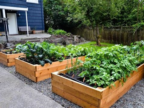 tips   urban garden  small area home vegetable garden vegetable garden planning