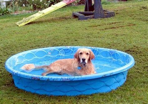 Hard Plastic Kiddie Pool With Slide