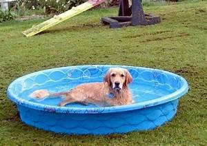 Hard plastic pools hard plastic kiddie pool with slide for Hard plastic dog house
