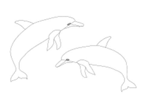 malvorlagen fische delfine wale lustige ausmalbilder