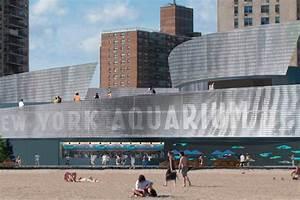 New York Aquarium, Ocean Wonders: Sharks!   Turner ...