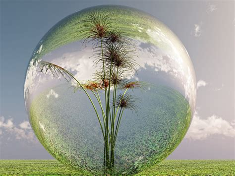 chambre bulle dans la nature bulle de nature by michel de lorient on deviantart