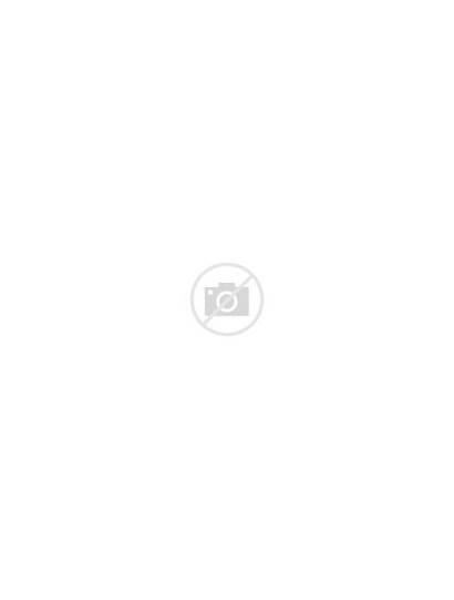 Letters Fun Numbers Writing Capital Series Learning