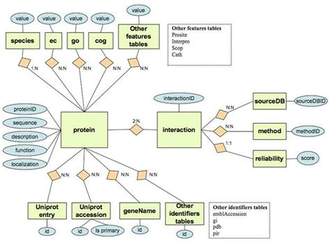 relational database design relational database design file 1 the relational