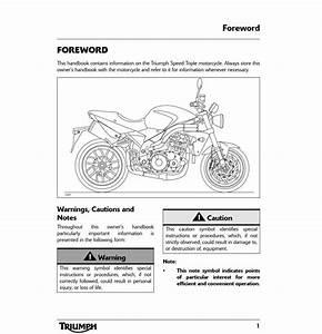 Triumph Speed Triple Motorcycle 2008 Owner U2019s Manual