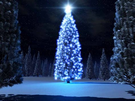 los 10 193 rboles de navidad m 225 s raros del mundo 10puntos