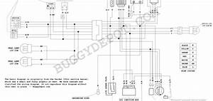 Twister Hammerhead 150 Wiring Diagram