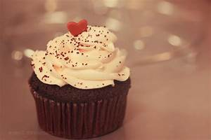 Lovely Cupcake - Cupcakes Photo (31768109) - Fanpop