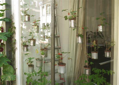 pflanzen zum aufhängen diy inspiration aus amsterdam h 228 ngende g 228 rten mit blechdosen pflanzen h 228 ngende g 228 rten