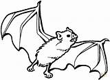 Coloring Bat Pages Printable sketch template