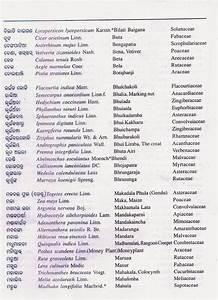 Names4ever kortingscode