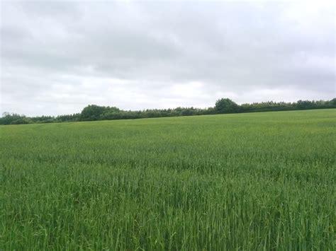 Why Secure Huxhams Cross Farm Land In Trust? Biodynamic