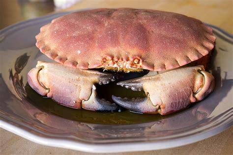 chaise longue pronunciation audio cuisson pate de crabe 28 images p 226 t 233 de crabe