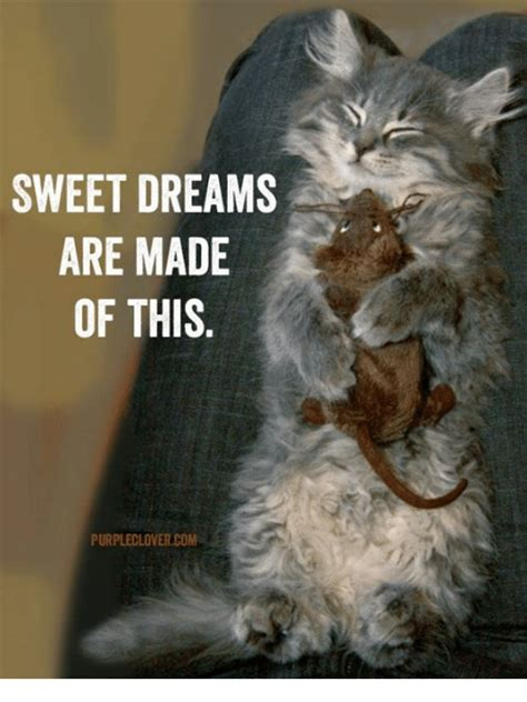 25 best memes about sweet dreams are made of sweet dreams are made of memes
