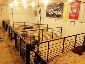 1000 images about show barn ideas on pinterest show for Barn builders show