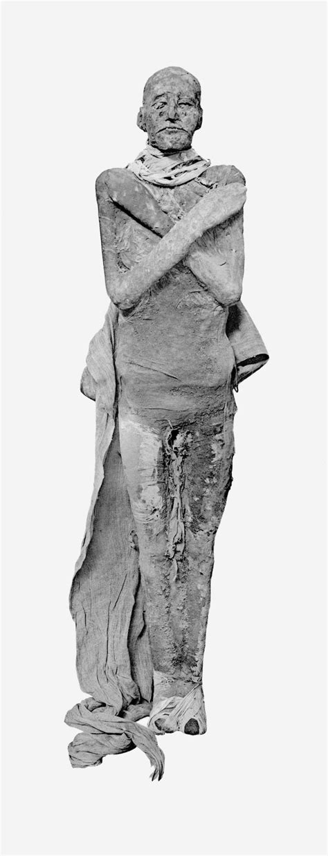 1000+ Images About Egyptian Mummies On Pinterest The