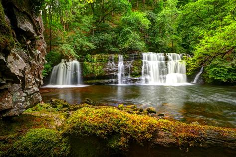 view green cute desktop images nature background images