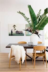 Plante De Salon : cr er une d co minimaliste chic avec des plantes exotiques le blog d co de l 39 atelier maison ~ Teatrodelosmanantiales.com Idées de Décoration