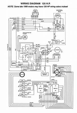 1996 Bayliner Capri Wiring Diagram 25026 Ilsolitariothemovie It