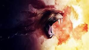 roaring wallpapers hd wallpapers id 13172